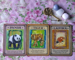 Messages From Your Animal Spirit Guides Oracle Card Reading