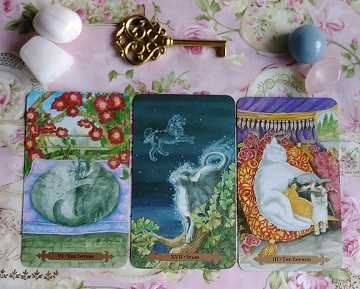 Intuitive Psychic Tarot Reading With The Mystical Cats Tarot Cards